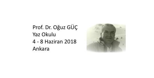 Prof.Dr. Oğuz Güç Yaz Okulu 2018